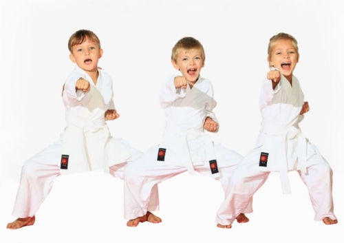 Karate Club Valais Sion Suisse Switzerland Ecole Olivier Knupfer 7e Dan